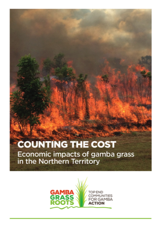 Counting The Cost: Gamba Grass Roots economics report